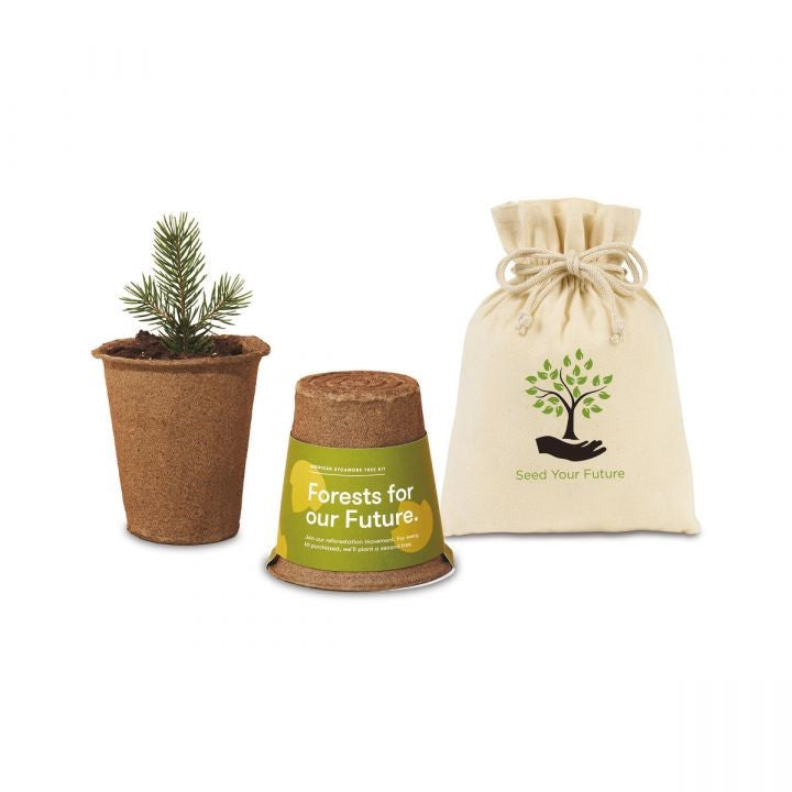 Modern Sprout One For One Tree Kits
