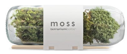 Terrarium Bottle Moss