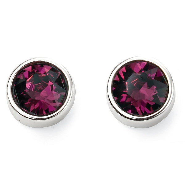 Birthstone Earrings-February Amethyst from the Earrings collection at Argenteus Jewellery