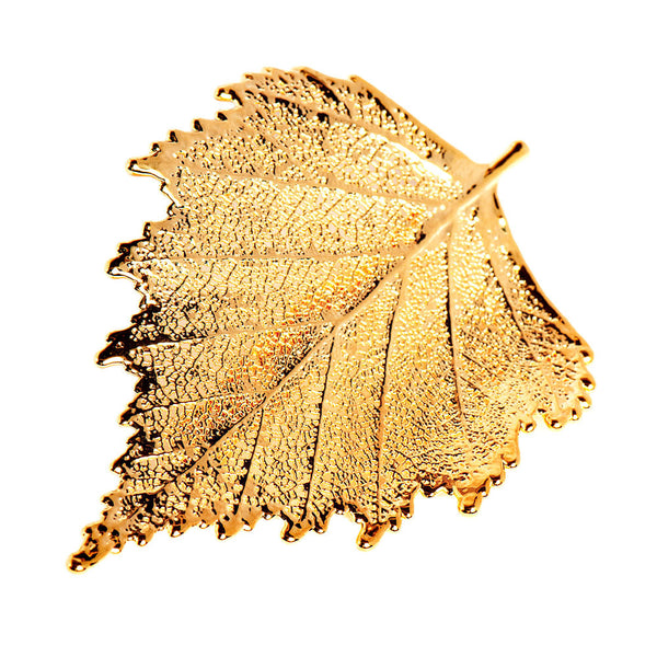 Gold-plated Birch Leaf Brooch from the Brooches collection at Argenteus Jewellery