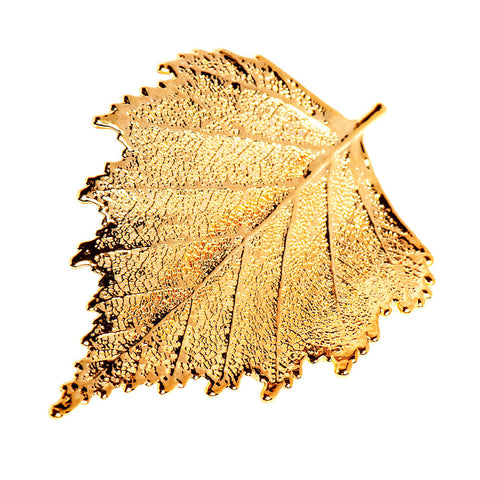 Birch Leaf Brooch Gold Plate
