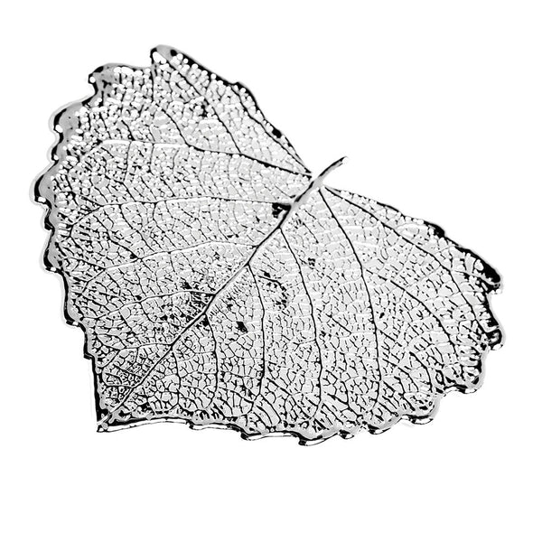 Silver-plated Cottonwood Leaf Brooch from the Brooches collection at Argenteus Jewellery