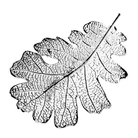 Silver-plated Lacey Oak Leaf Brooch from the Brooches collection at Argenteus Jewellery