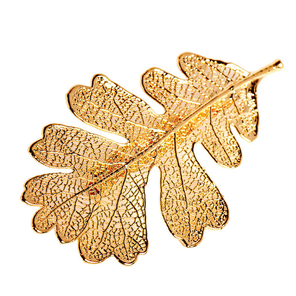 Gold-plated Lacey Oak Leaf Brooch from the Brooches collection at Argenteus Jewellery