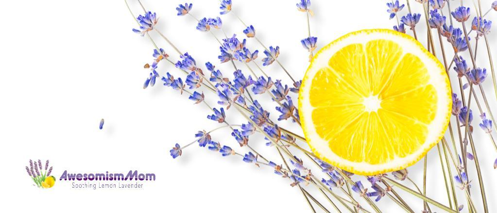Lemon Lavender Cleaners