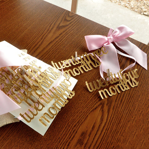 2nd Year Monthly Photo Banner. Handcrafted in 1-3 Business Days. Pink and Gold 2nd Birthday. Second Birthday Party Ideas.