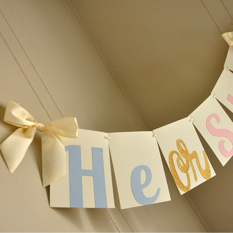 Gender Reveal Party Decorations.  Ships in 1-3 Business Days.  He or She Banner.
