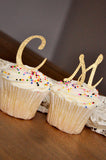 Initial Letter Cupcake Toppers.  Set of 12.  Ships in 1-3 Business Days.  Pink and Gold Birthday Party Decorations.