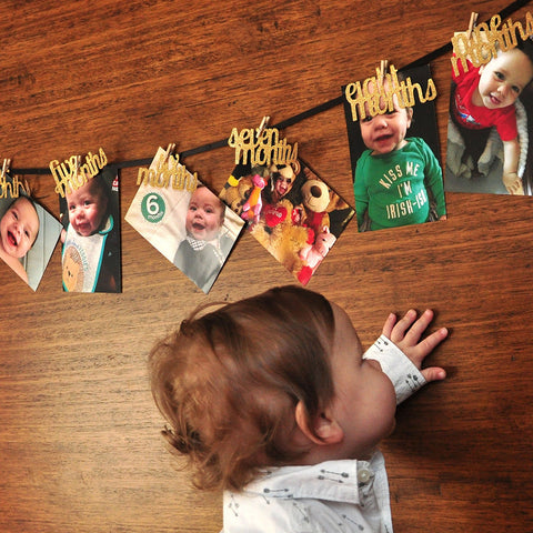 Wild One Party Decor. Handcrafted in 1-3 Business Days. 12 Month Photo Banner. Wild One Banner.