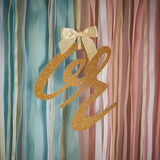 Gender Reveal Party Decor Ribbon Garland.  Ships in 1-3 Business Days.  Pink or Blue Banner.