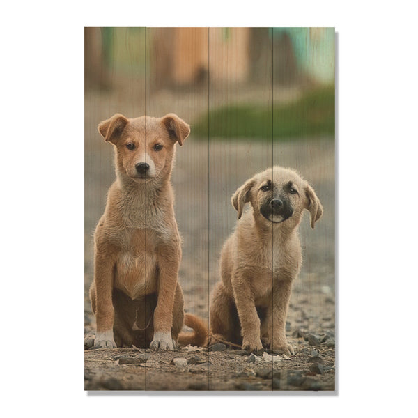 Cute Dogs Printed on Cedar Wood. Custom Image Print of Pets
