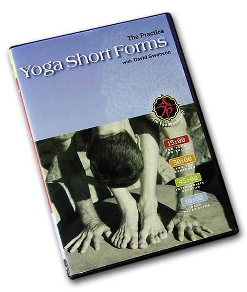 Yoga Short Forms DVD - Ashtanga Yoga Productions - 2