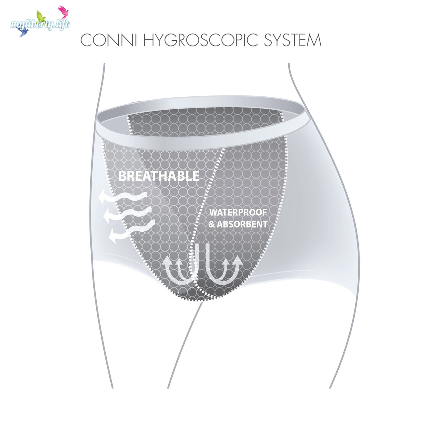 bef2bfa6b ... Technical drawing of reusable washable absorbent underwear for women  from Conni Classic style ...