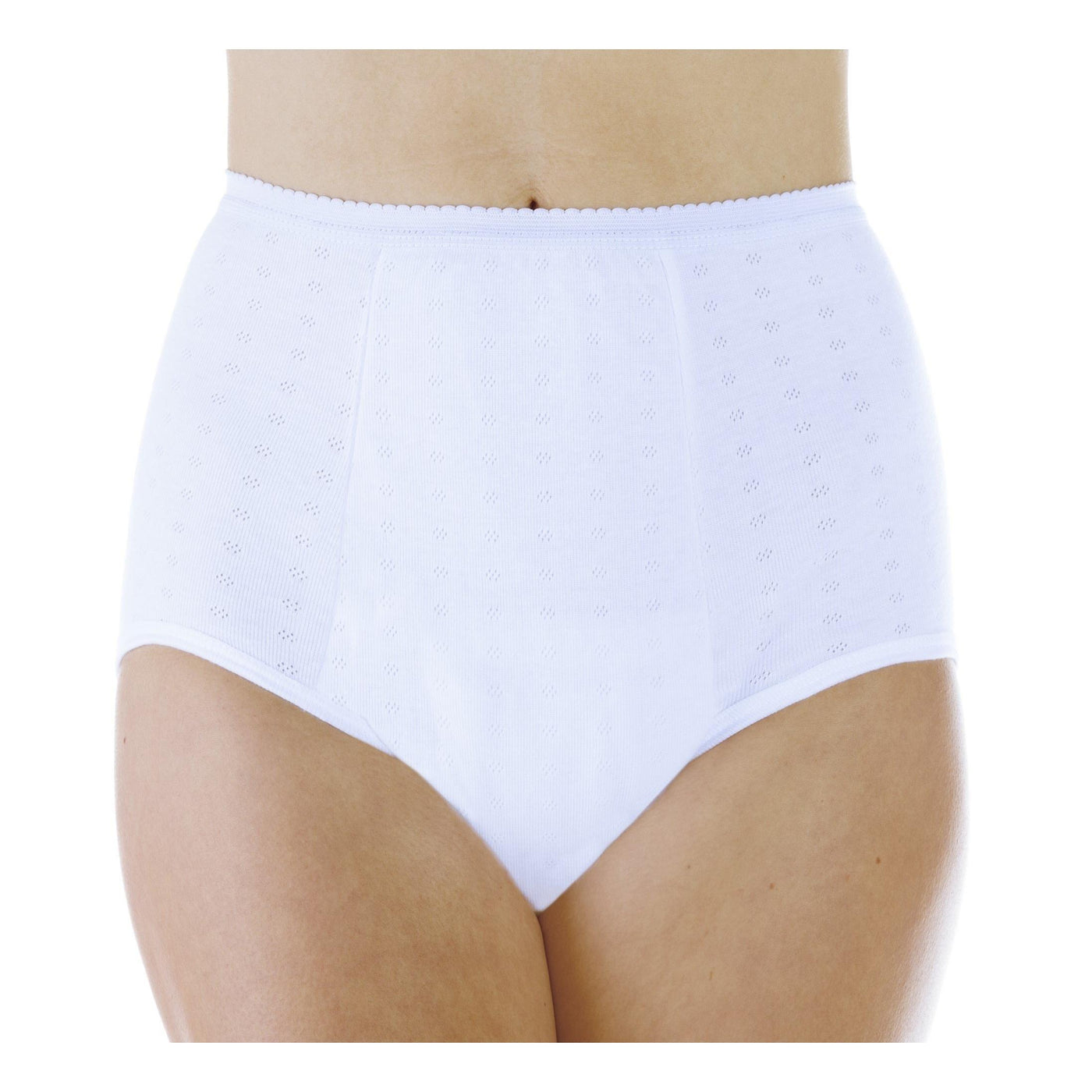 Washable Absorbent Bladder Leak Control Women S Underwear Hold 20 Oz Maximum Absorbency From Wearever Canada Myliberty Life