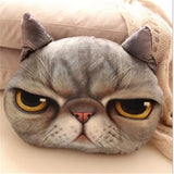 Cartoon Cat Decorative Pillow