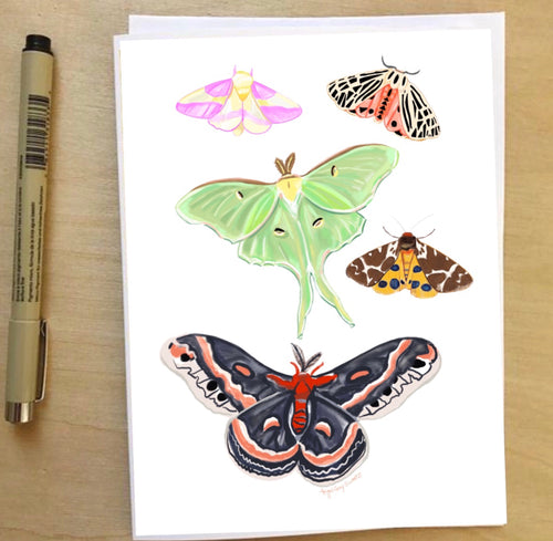Moths, nature inspired card, Luna moth--Greeting Card