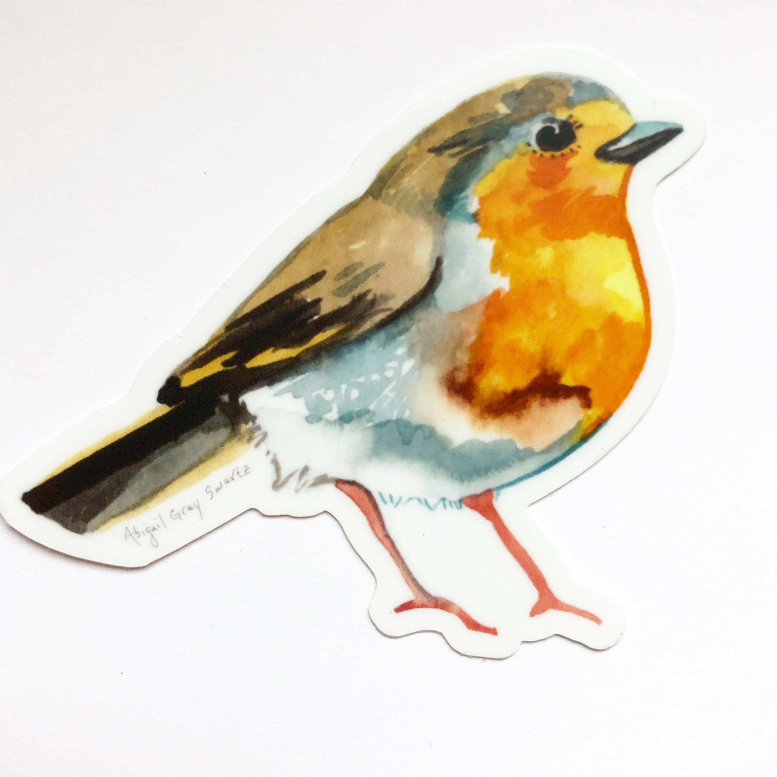 English Robin, portrait, woodland forest STICKER - Stickers & Magnets