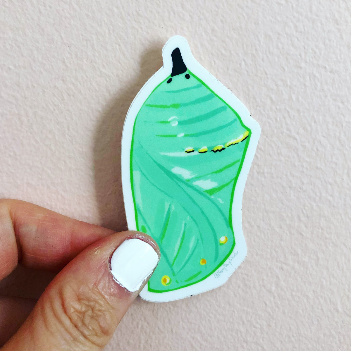 Chrysalis sticker, manarch cocoon sticker, by Abigail Gray Swartz