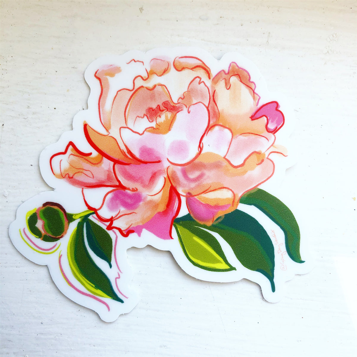 Peony Duo, floral STICKER - Stickers & Magnets