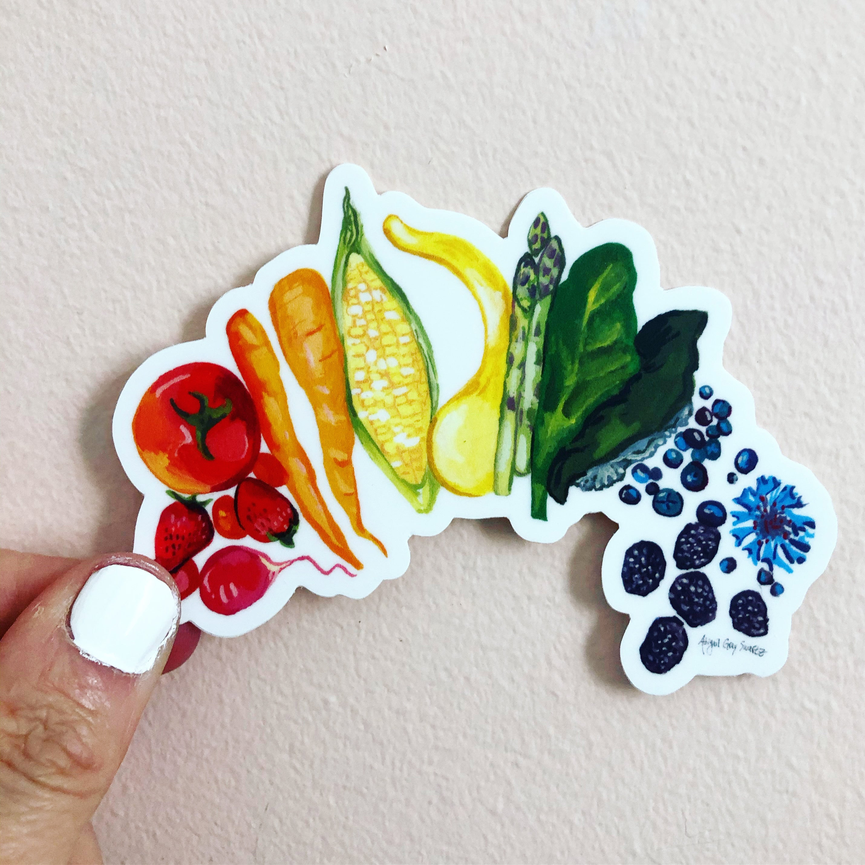 food rainbow sticker, healthy eating sticker, illustration sticker Abigail Gray Swartz