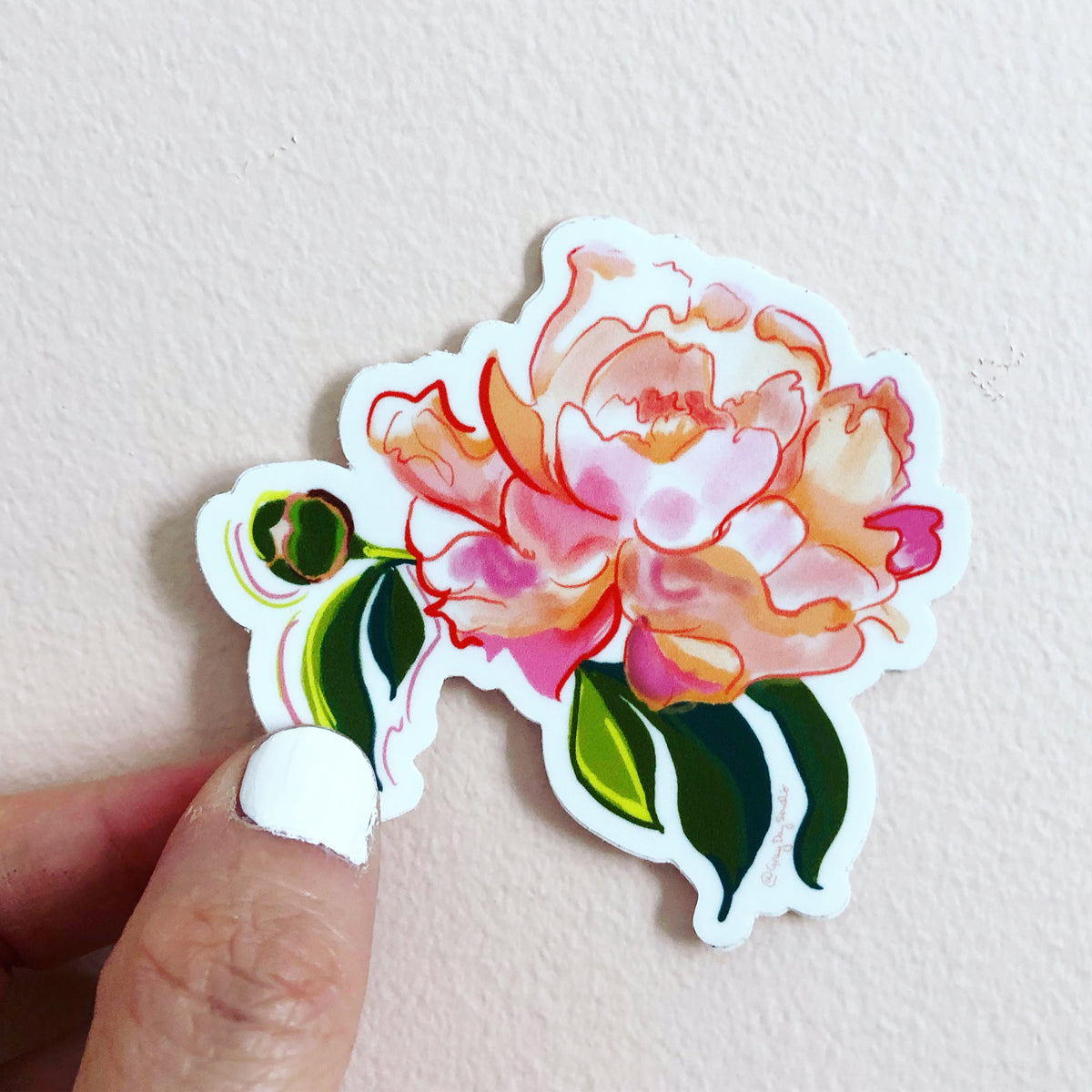 peony sticker, floral sticker, botanical sticker by Abigail Gray Swartz