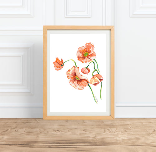 watercolor floral painting poppies print