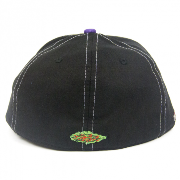 Grassroots California Nugbrand Annunaki Fitted