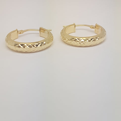 9ct Yellow Gold Earring 34030