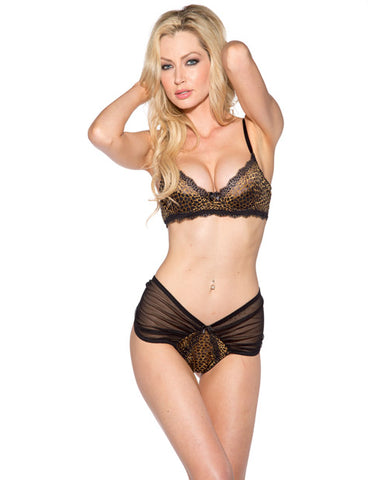 Lace Trim Bra & Sheer Boyshort Leopard