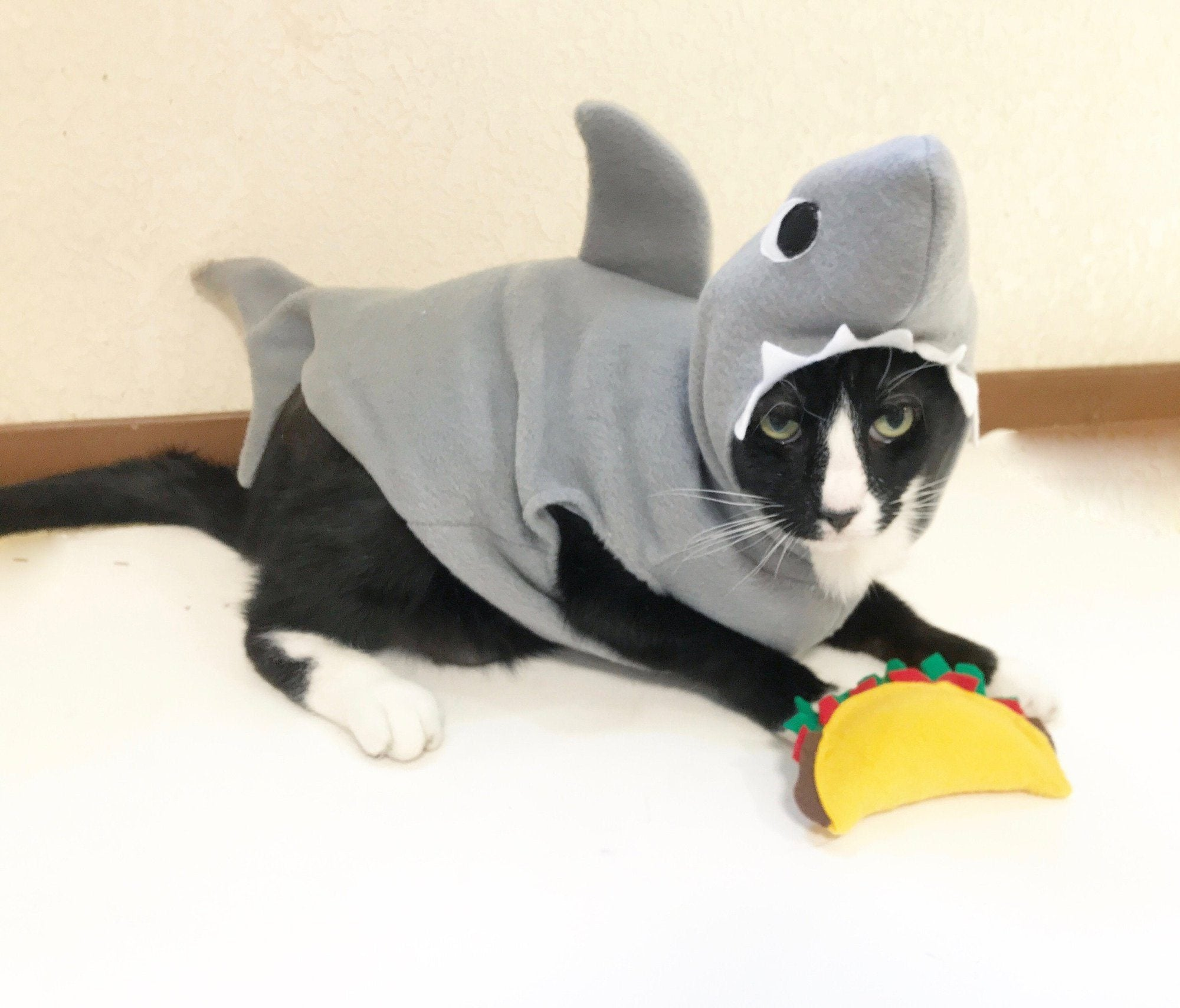 Cat Costumes for Every Purr-sonality This Halloween