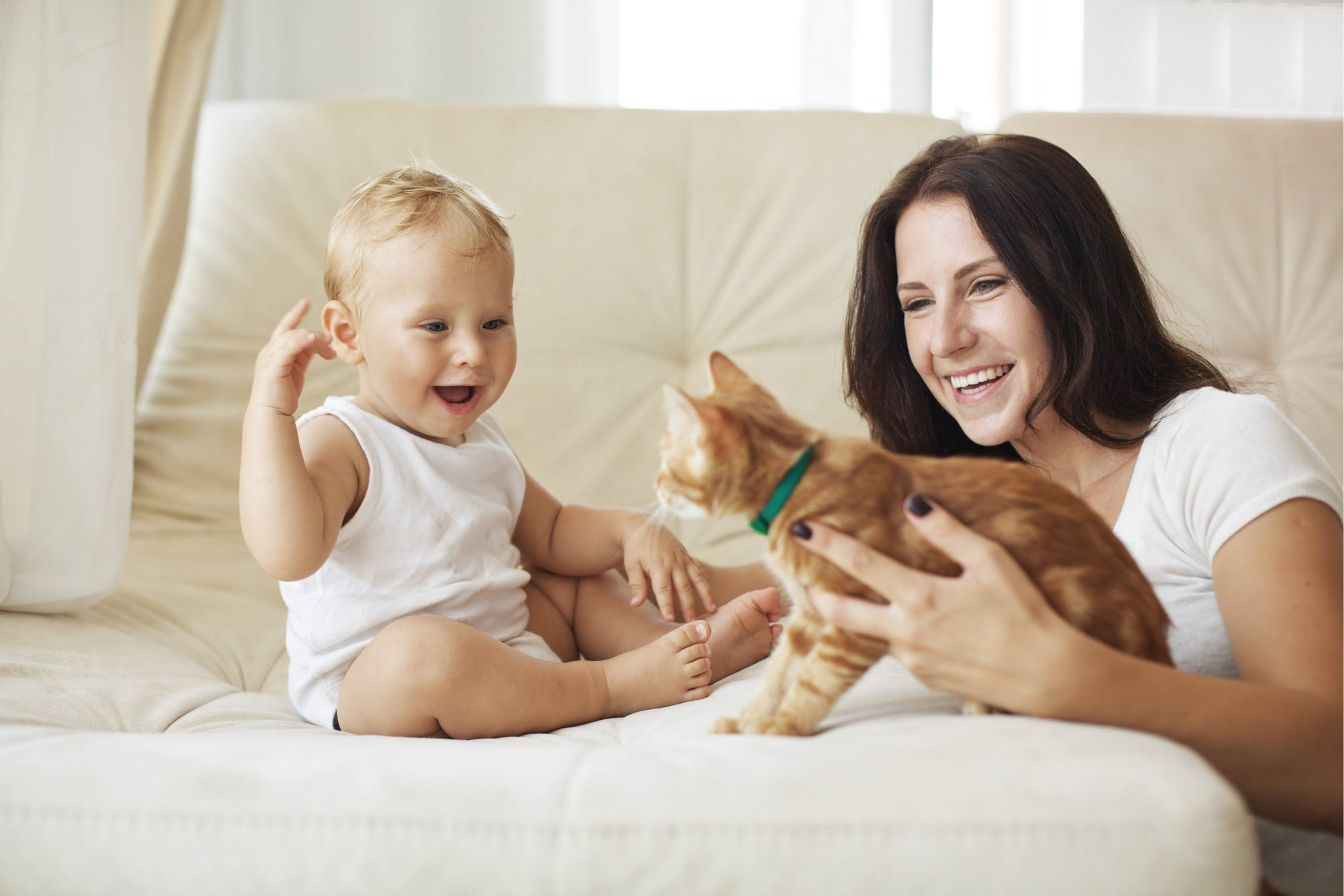 The Beautiful Bond Between Babies and Cats