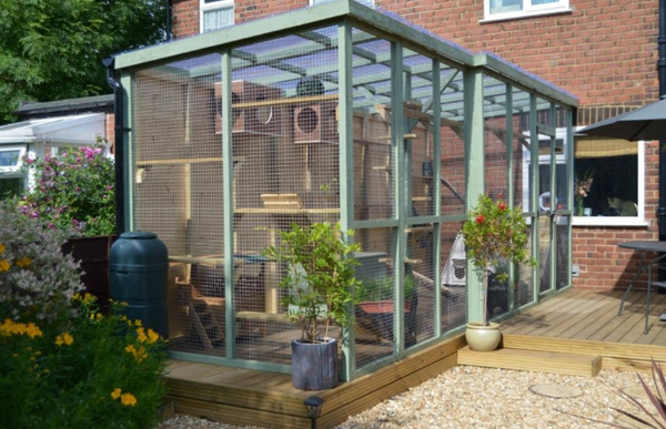 Does Your Cat Need A Catio For Summer Prettylitter
