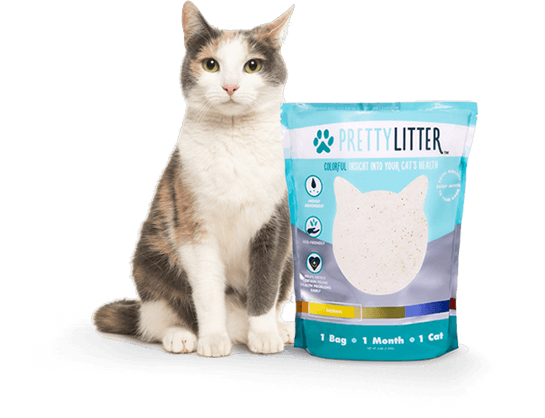 PrettyLitter™ - The Dust Free.