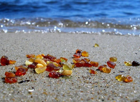 Baltic Sea Amber