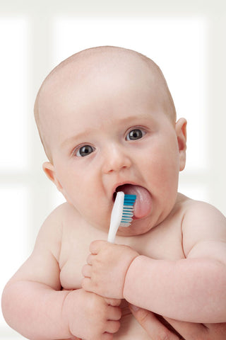 Chewing on a Toothbrush