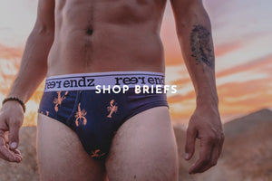 Buy Men's briefs underwear online