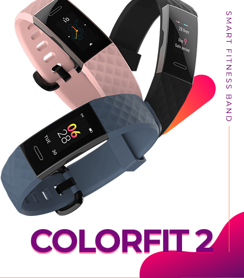 Noise Colorfit 2 Smart Fitness Band