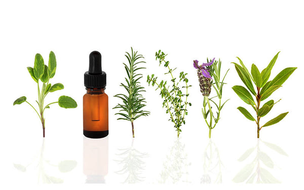 Essential Oils for Headaches – Experience Relief the Natural Way