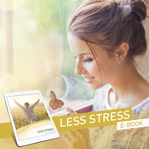 Less Stress Ebook