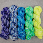The Rainbow Collection - Cool - Full Skeins