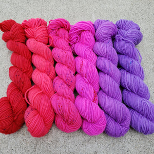 Berries are the Bestest Mini Skein Set