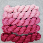 Raspberry Mini Yarn Set