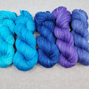 Blues and Purples Reef DK Yarn Set