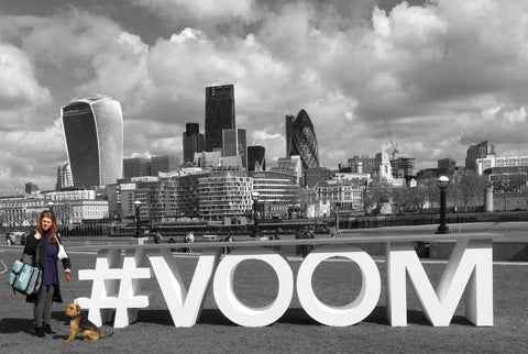 Voom with Rovernighter 2018
