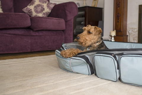 The Rovernighter - the one stop travel bag and pet bed