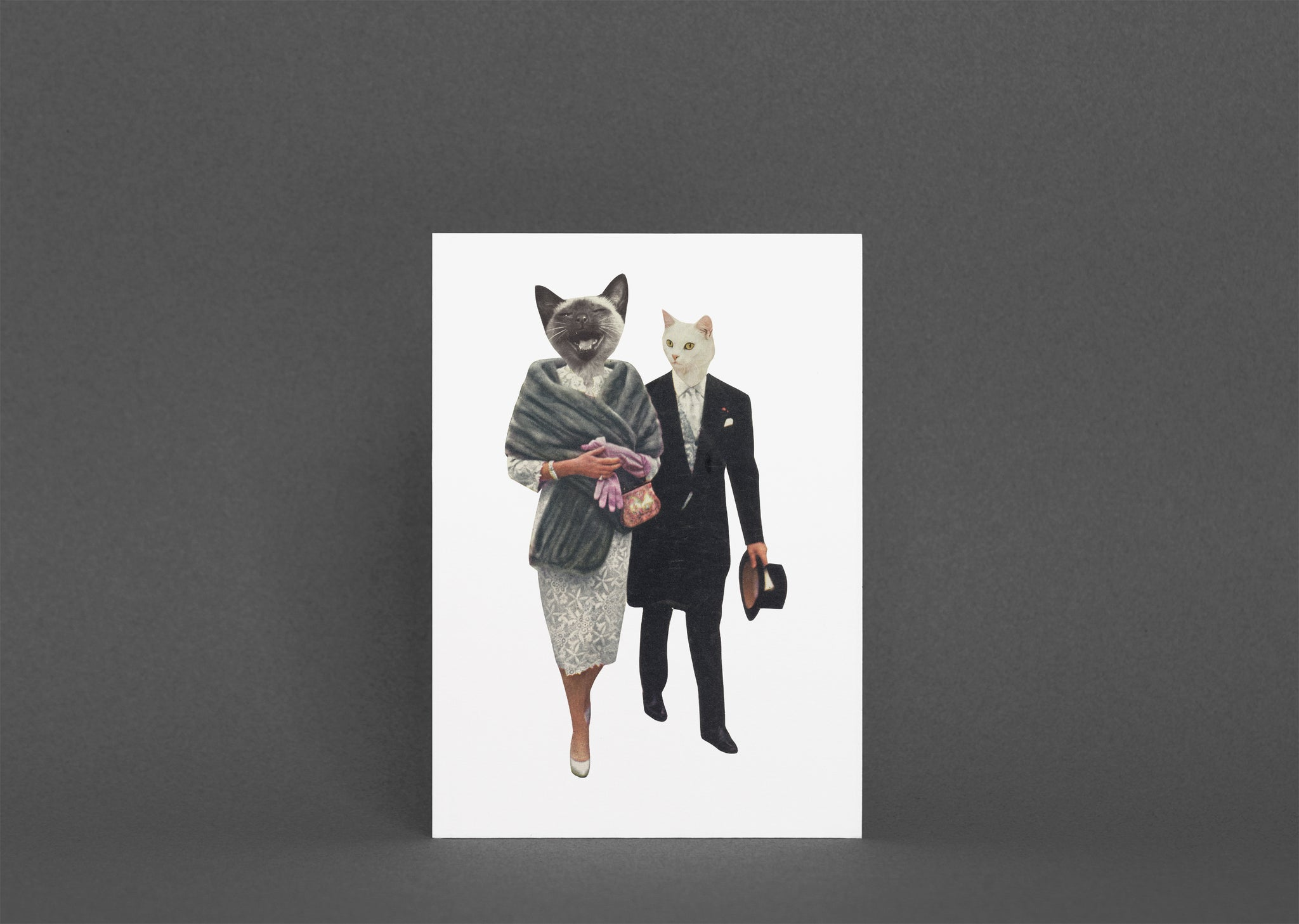 Blank Greetings Card With Envelope - Cat Lovers