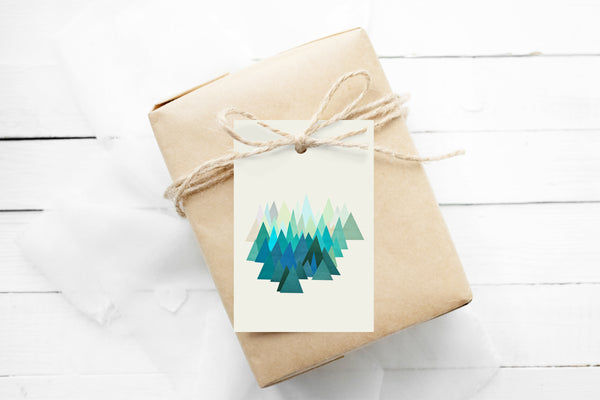 Gift Tags Pack of 12 With String - Cold Mountain