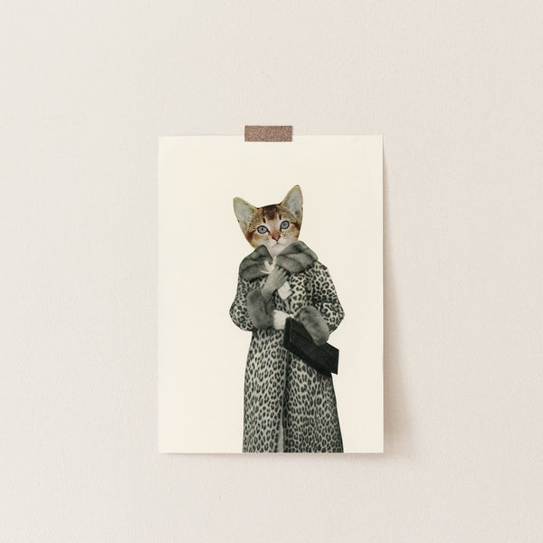 Blank Greetings Card - Kitten Dressed as Cat