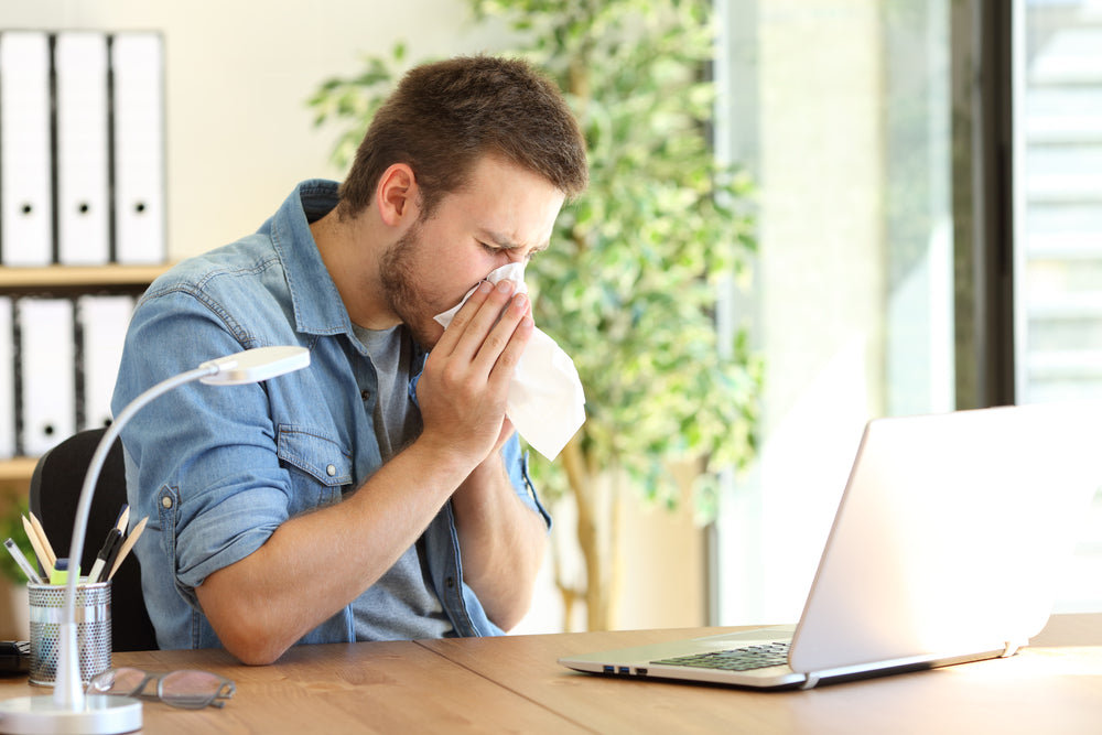 How to Keep Your Allergies In Check This Summer