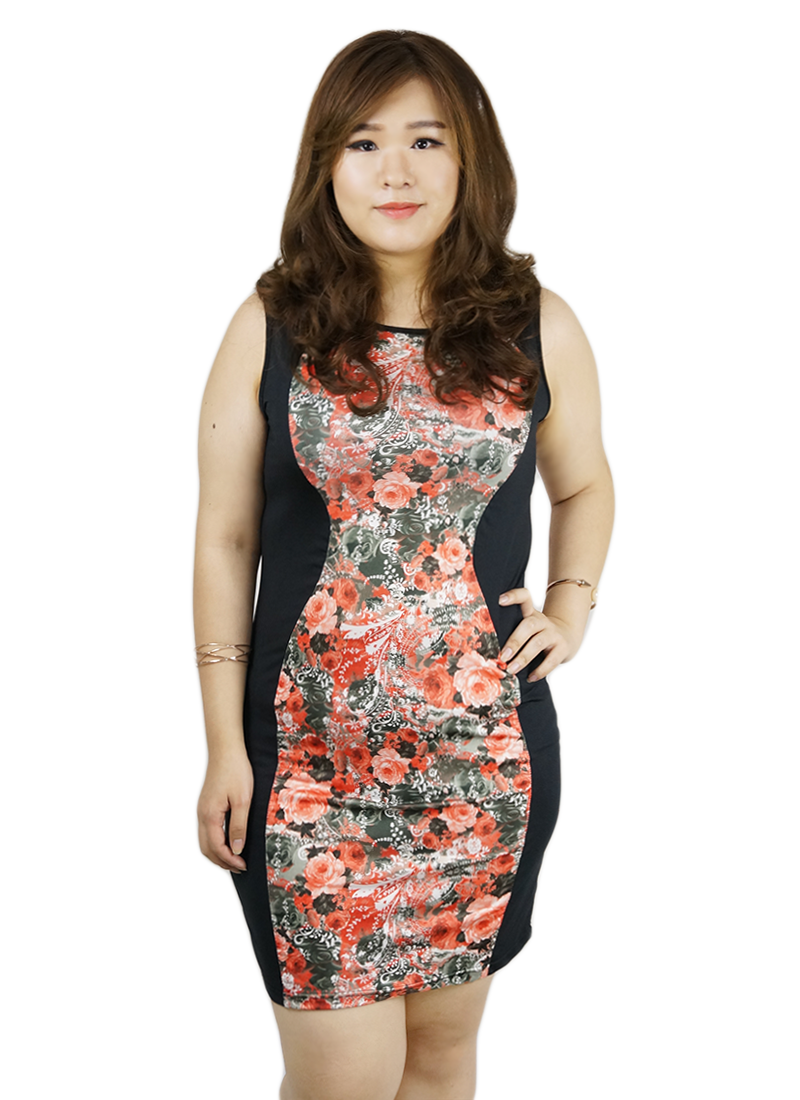 ladies plus size dress